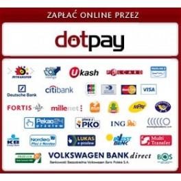 zapłać online